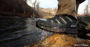 chaussure de wading patagonia
